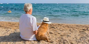 Man sitting at beach with dog